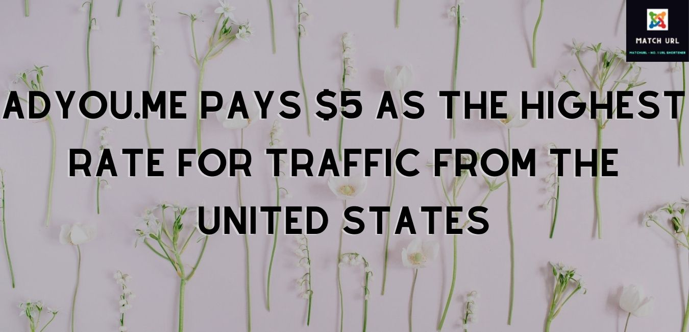 adyou.me pays $5 as the highest rate for traffic from the United States