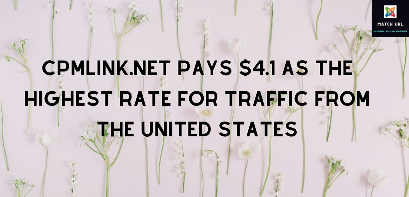 clik.pw pays $3 as the highest rate for traffic from Norway