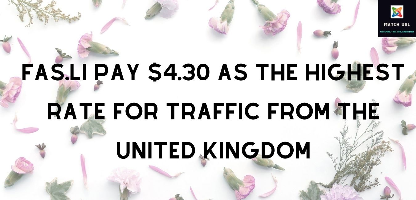 fas.li pay $4.30 as the highest rate for traffic from the United Kingdom